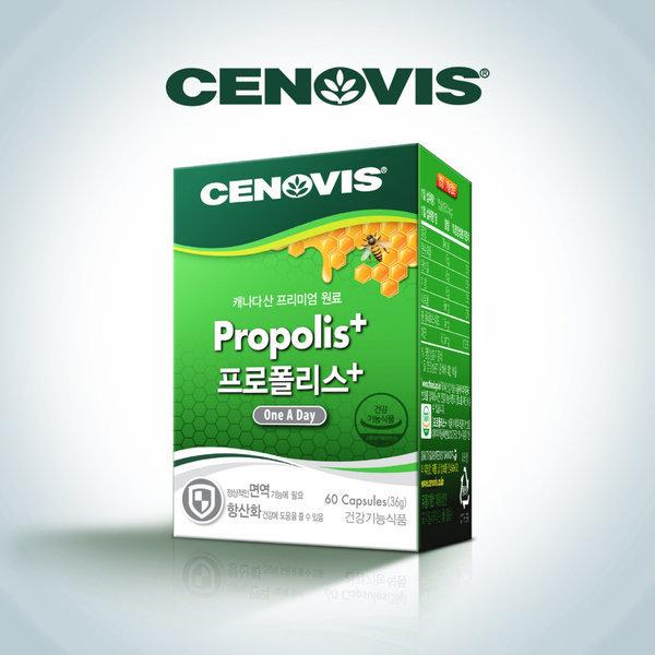 프로폴리스 (60캡슐)