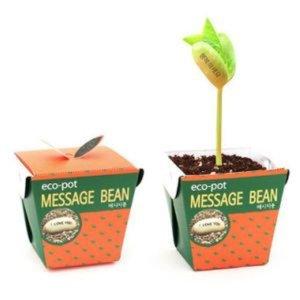 에코팟_메시지콩 종이미니화분 종이화분 미니식물 메