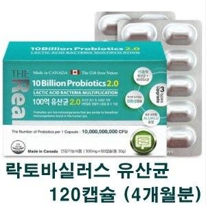 더리얼 모유유산균 락토바실러스 프로바이오틱스 캡슐