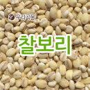 국산 찰보리 1kg 2019년 국산 잡곡 소포장