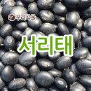 국산 서리태 500g 2018년 국산 잡곡 소포장 검은콩