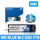 WD Blue M.2 SSD 3D NAND 2TB 대원정품 yj