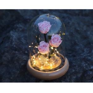 시들지않는꽃 천일화 미녀와야수 장미 유리돔 무드등