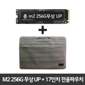 17ZD990-GX30K 전용  총 M2 256G 무상업 +전용파우치