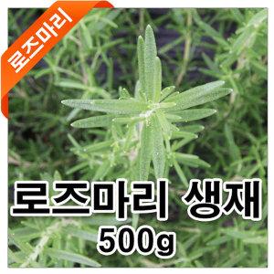 로즈마리/타임/경남진주재배/허브류/초특가