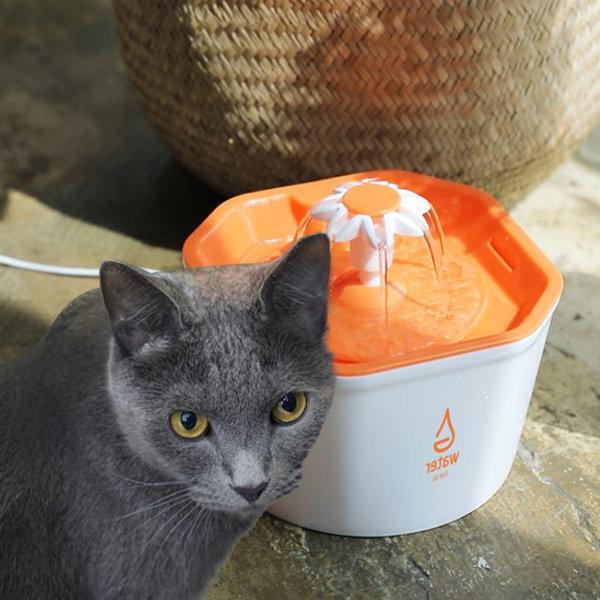 고양이 자동 급수기 급수대 정수기 물통 물그릇