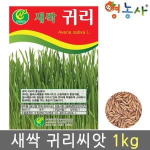 새싹 귀리씨앗 1kg/ 새싹 씨앗 귀리싹 귀리 캣그라스