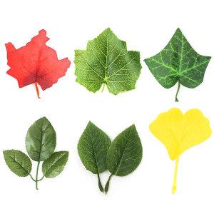 잎사귀 나뭇잎 꽃잎 환경구성 오꿈