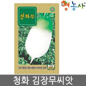 청화무씨앗 500립 무씨 가을씨앗 김장 무씨앗