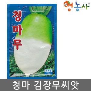 청마무씨앗 25g 김장무 씨앗 김장무우 가을 채소 종자