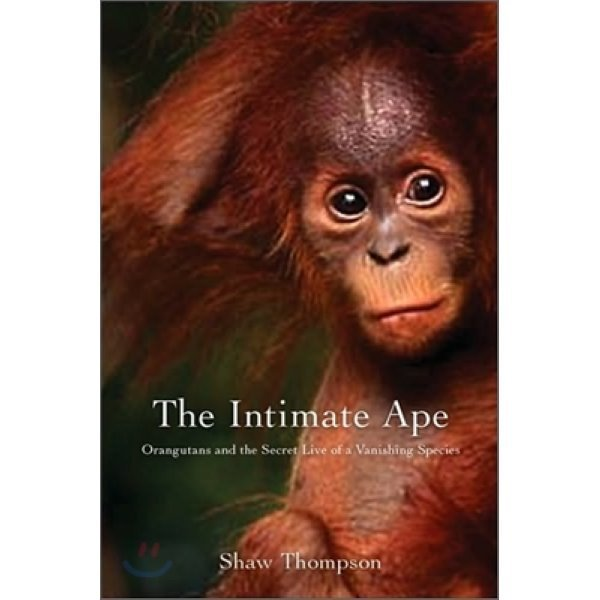 The Intimate Ape : Orangutans and the Secret Life of a Vanishing Species  Shawn Thompson