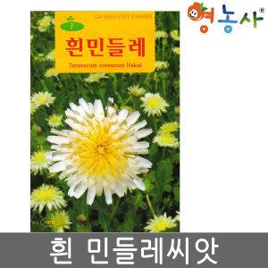 흰민들레씨앗 100립 백색 흰색 하얀 민들레 씨앗 약용