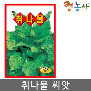 취나물씨앗 3g 취나물씨 나물씨앗 나물 재배 채소씨앗