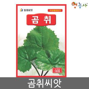 곰취씨앗 100립 곰취씨 나물씨앗 향토채소 민속 채소