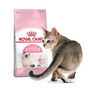 키튼 10kg 면역력강화 어린 고양이사료