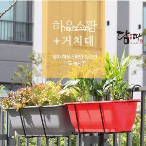 담따  하우스팜 텃밭가꾸기  플라스틱 대형화분
