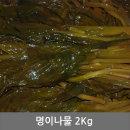 명이나물 2kg 반찬 청정 동해안 속초