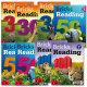 브릭스 리딩 (Bricks Reading) 30 50 100 150 200 250 300 Level 1 2 3