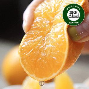 제주 현희경님의 달콤한 황금향 3kg (16~20과)