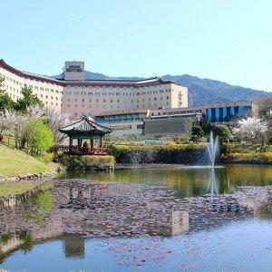 |카드할인 15프로| |경북 호텔| 경주 코오롱 호텔  (경주)