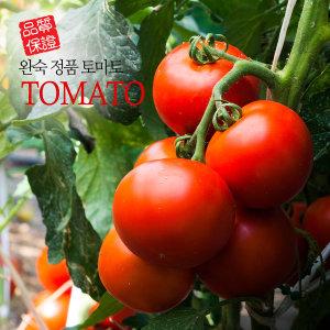 원시인농산 완숙찰토마토 10kg 대중과