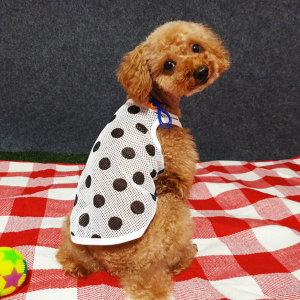 강아지여름옷 도트 메쉬 나시 망사 티셔츠