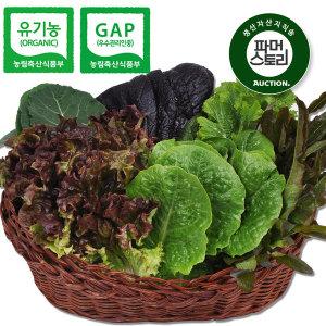쌈채소 /충북충주 전현철님의 유기농 모듬 쌈채소 800g