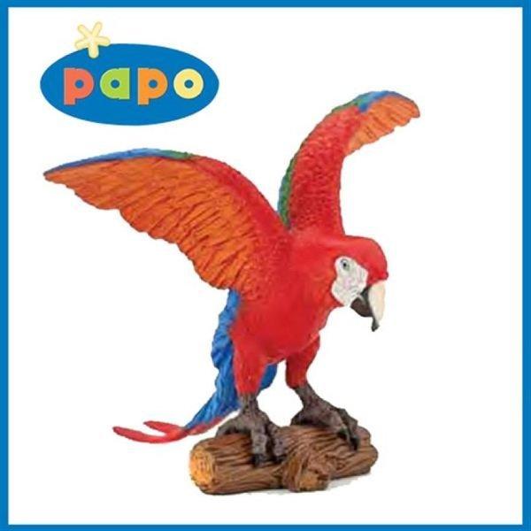 코리아 앵무새