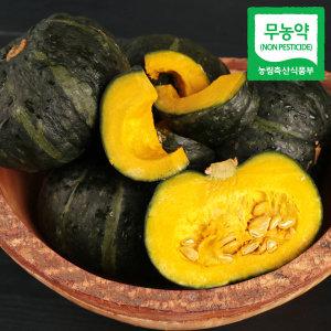 미니 단호박(밤호박) 1.5kg 보우짱 안심 무농약~