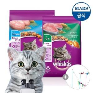 위스카스 건사료 3kg/고양이사료