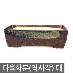 다육화분 직사각_대 미니화분 토분 옹기 다육이 화분