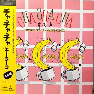 L3943- 일본 팝LP/ KEY LARGO - CHA CHA CHA