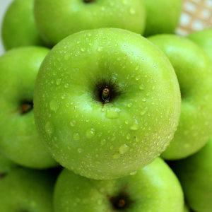 (현대Hmall)아오리 사과 10kg(31-40과)
