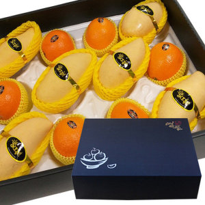 (st푸른농원)  바로배송  마음가득 망고 오렌지 혼합과일선물세트