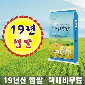 철원오대쌀 19년산 햅쌀 DMZ 대마리 10kg