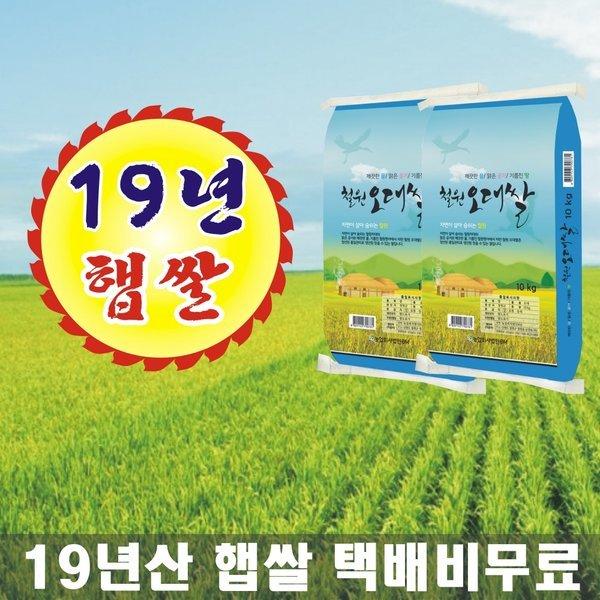 철원오대쌀 19년산 햅쌀 DMZ 대마리 10kg+10kg