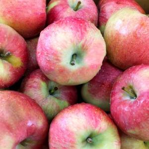 꿀맛 홍로 사과 10kg(36-45과) 중과 특가