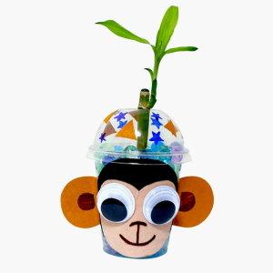 /원숭이개운죽화분 만들기 화분만들기 예쁜화분만들기