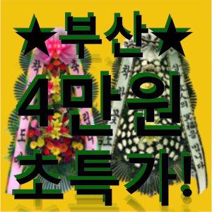 화환/근조화환/축하화환/초특가이벤트/결혼식/장례식