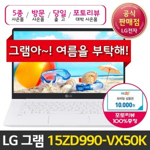 LG 15ZD990-VX50K 2019 판매1위그램