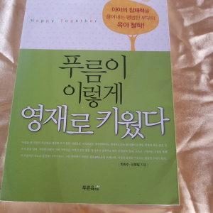 푸름이 이렇게 영재로 키웠다/최희수외.푸른육아.2010