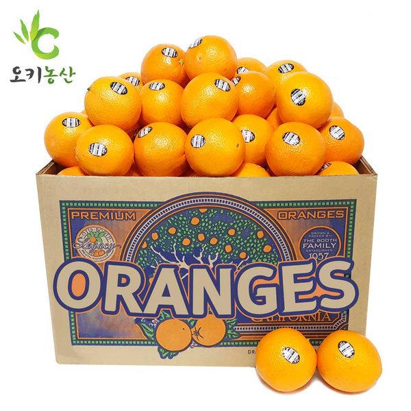 블랙라벨 고당도 오렌지 56과(특대과/300g내외) 15kg