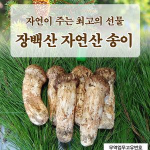 자연산 송이버섯 추석선물 장백산 송이버섯 1kg 3등급