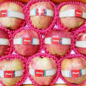 과일 프리미엄 사과 선물세트 10수 12수 15수