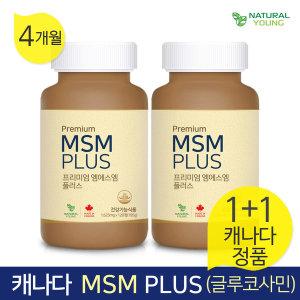 내추럴영 MSM 플러스 글루코사민 4개월분/1+1이벤트