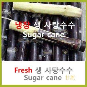 냉장 보라 사탕수수스틱 10kg 무료배송