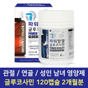 파워팔팔 글루코사민 무릎 관절 연골 영양제 120캡슐