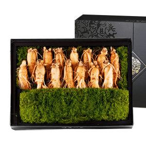 고려 인삼 수삼 선물세트 명품1호 1.6kg (15-17편)