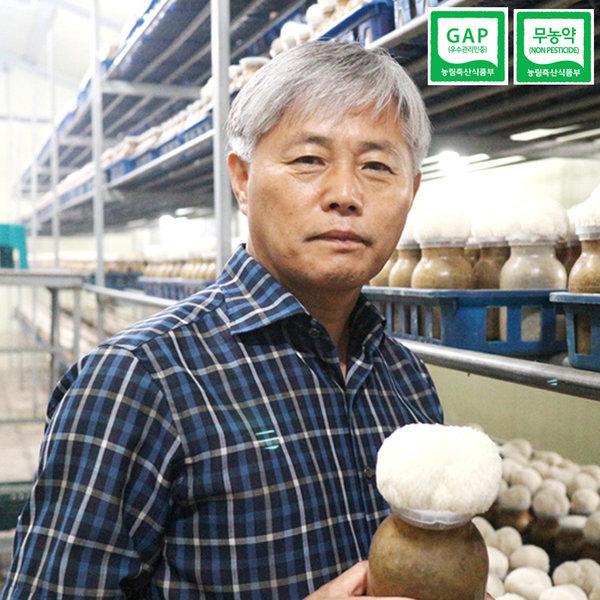 지리산 산청 무농약 생 노루궁뎅이 버섯 6팩 선물포장