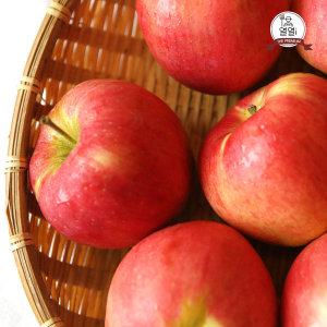 열열아이 햇 사과 당도 좋은 경북 사과  중소과 8kg